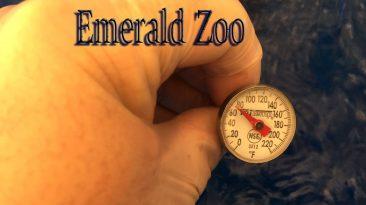 Emerald Zoo Den: EZ Taking Temperature for Cannabis Water.