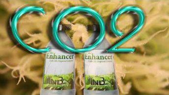 Emerald Zoo Den: TNB The Enhancer CO2