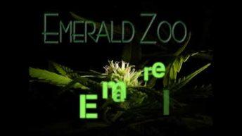Emerald Zoo: Beans